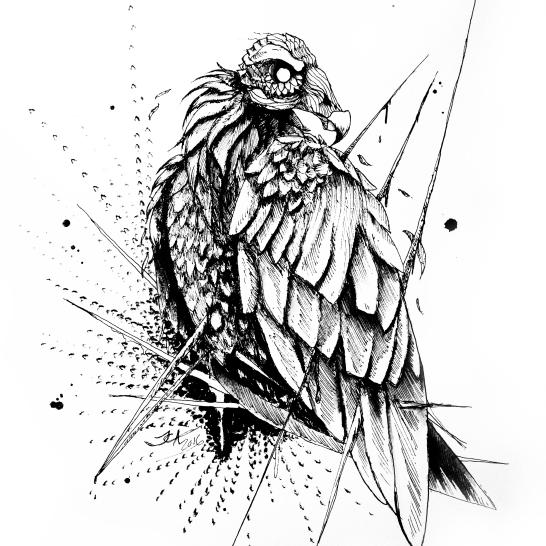 vulturebrighter2